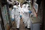 Một gia đình có 16 người nhiễm virus corona-2