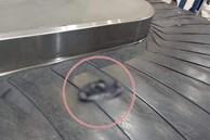 Hàng trăm hành khách ở sân bay ngơ ngác đứng nhìn chiếc quần lạ trôi qua lại trên băng hành lý, không ai dám nhận của mình