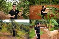 'Ông hoàng nhạc sến' Ngọc Sơn tiết lộ mảnh đất 20 nghìn mét vuông tại Lâm Đồng