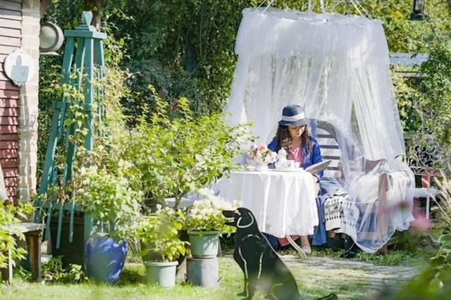 Choáng ngợp vườn hoa 6000m2 ngắm mãi không chán của cặp vợ chồng trẻ-8