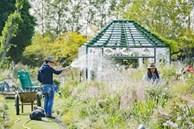 Choáng ngợp vườn hoa 6000m2 'ngắm mãi không chán' của cặp vợ chồng trẻ
