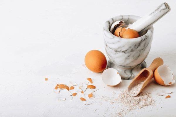 Mang vỏ trứng ra vườn rắc, 2 tuần sau cây xanh tươi mơn mởn bất ngờ-1
