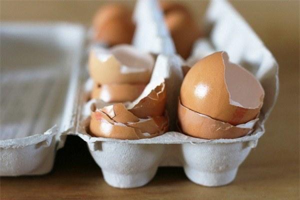 Mang vỏ trứng ra vườn rắc, 2 tuần sau cây xanh tươi mơn mởn bất ngờ-4