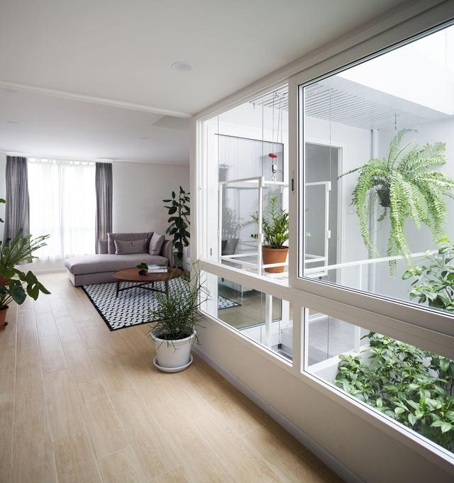 """Choáng ngợp ngôi nhà 300m2 với khu vườn bonsai toàn cây khủng""""-6"""