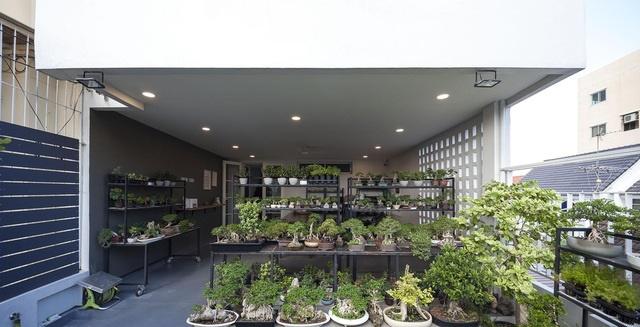 """Choáng ngợp ngôi nhà 300m2 với khu vườn bonsai toàn cây khủng""""-9"""