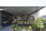 Khu vườn rộng 1000m² với đủ loại rau Việt do con gái tặng mẹ trên đất Mỹ xa xôi-38