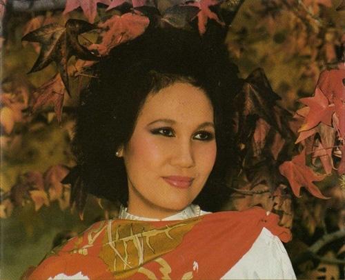 Danh ca Thái Thanh: Sau âm nhạc là huyền thoại về một người mẹ khiến ai cũng ngưỡng mộ-5