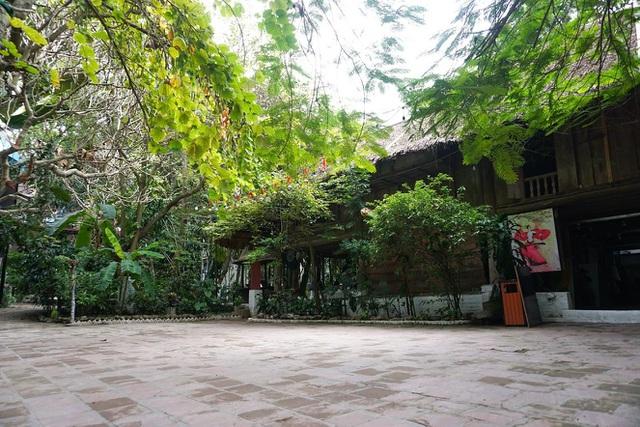 Kỳ lạ quần thể nhà xây dựng trên cây cổ thụ trăm tuổi độc nhất Hà Nội-2