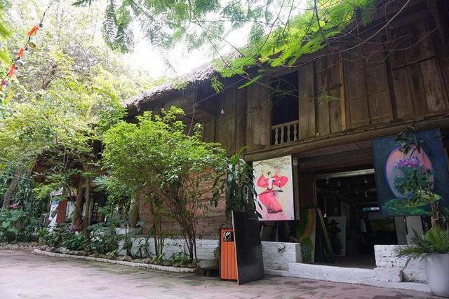 Kỳ lạ quần thể nhà xây dựng trên cây cổ thụ trăm tuổi độc nhất Hà Nội-3