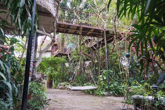 Kỳ lạ quần thể nhà xây dựng trên cây cổ thụ trăm tuổi độc nhất Hà Nội-4