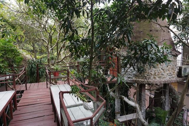 Kỳ lạ quần thể nhà xây dựng trên cây cổ thụ trăm tuổi độc nhất Hà Nội-8