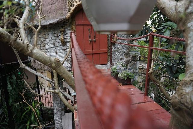 Kỳ lạ quần thể nhà xây dựng trên cây cổ thụ trăm tuổi độc nhất Hà Nội-9