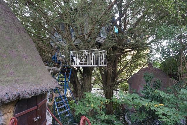 Kỳ lạ quần thể nhà xây dựng trên cây cổ thụ trăm tuổi độc nhất Hà Nội-10