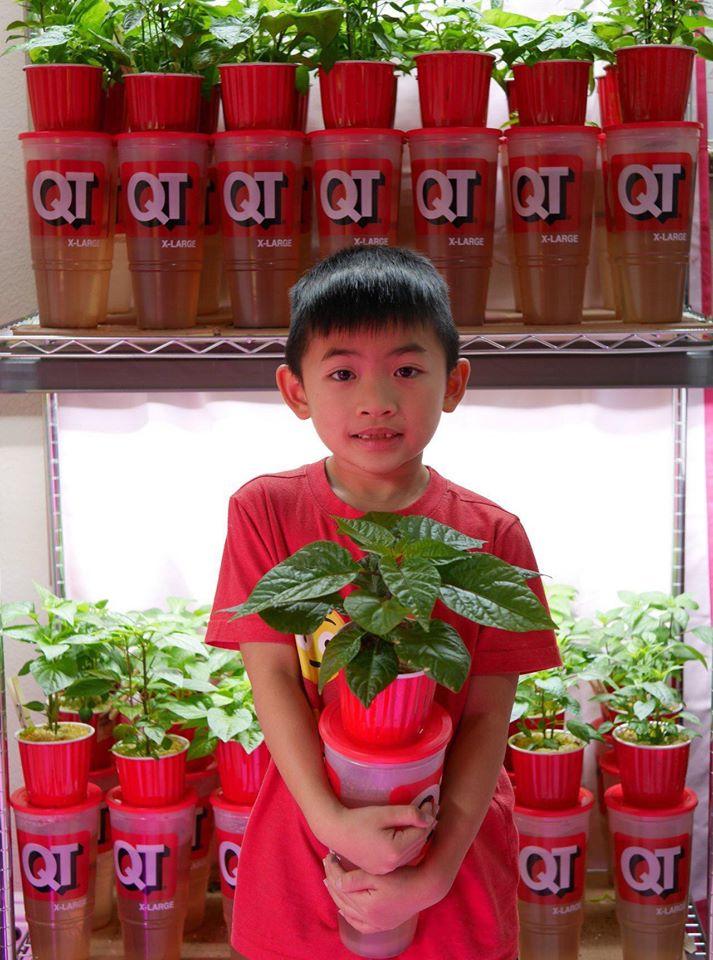 Khu vườn rộng 1000m² với đủ loại rau Việt do con gái tặng mẹ trên đất Mỹ xa xôi-25