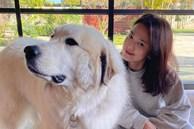 Song Hye Kyo lộ diện sau 20 ngày trở về từ Milan, gây chú ý vì khoảnh khắc này
