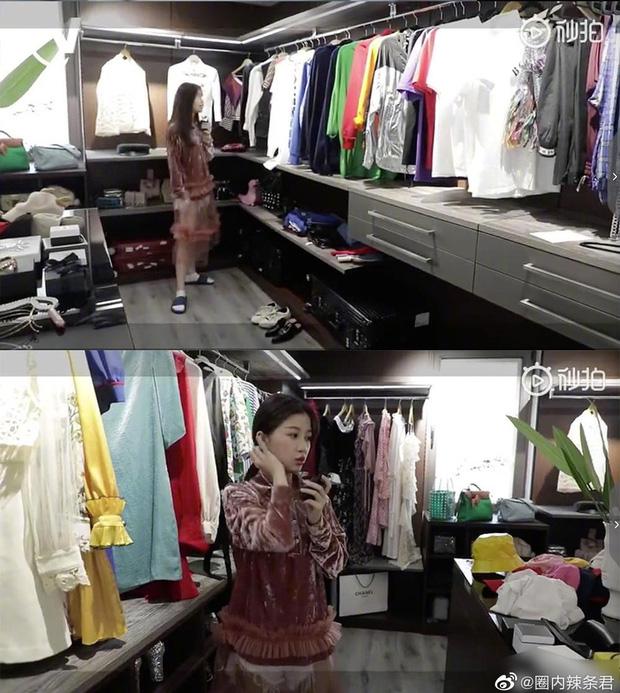 Hé lộ căn hộ Thượng Hải siêu sang của Thánh lố Ngu Thư Hân: Ngập tràn hàng hiệu, không khác gì trung tâm mua sắm-3