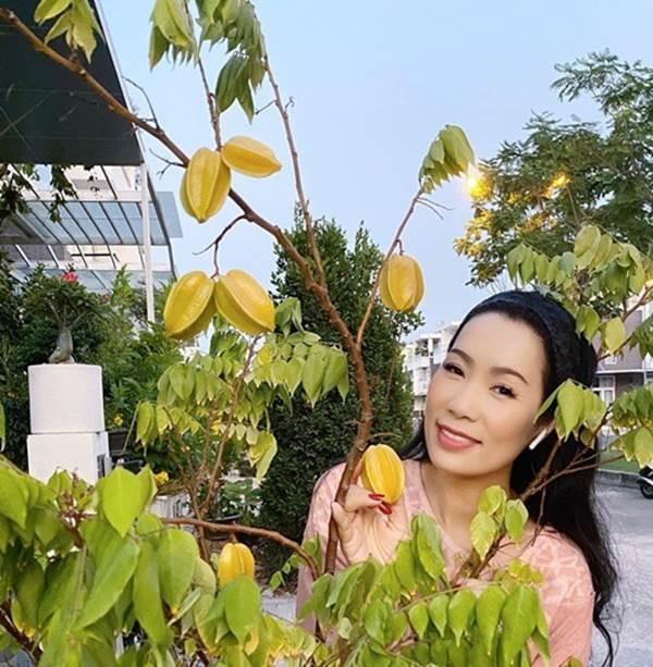Phát sốt với vườn cây xanh mướt trong biệt thự sang trọng của Trịnh Kim Chi-7
