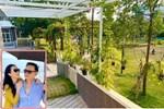 Là đại gia bất động sản Shark Hưng và vợ lại chọn ở nơi bình dị, trồng rau nuôi gà-11