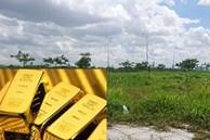 Cô gái độc thân có 1 tỷ, nên đầu tư mua vàng hay mua nhà?