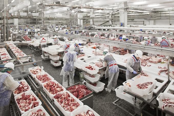 Thịt lợn Nga ồ ạt về Việt Nam, ép giá hàng trong nước-1