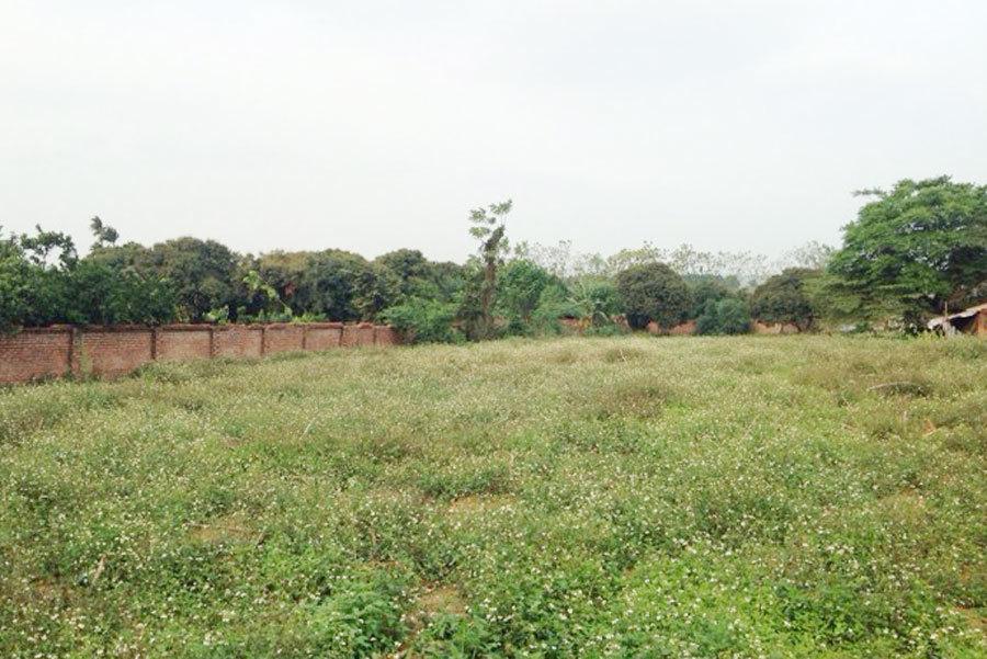 Mua đất Hoà Lạc, dính chiêu của cò 10 năm chôn tiền đồi hoang-2