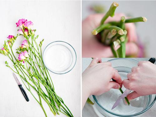 Đổ đường vào nước cắm hoa ai cũng tưởng lãng phí, kết quả lại vô cùng thần diệu-1