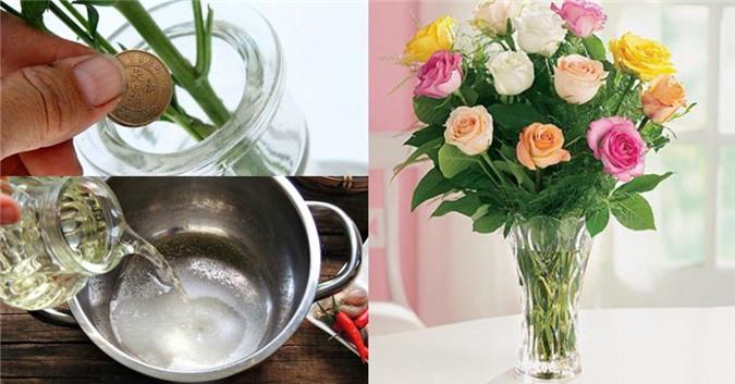 Đổ đường vào nước cắm hoa ai cũng tưởng lãng phí, kết quả lại vô cùng thần diệu-2