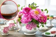 Đổ đường vào nước cắm hoa ai cũng tưởng lãng phí, kết quả lại vô cùng 'thần diệu'