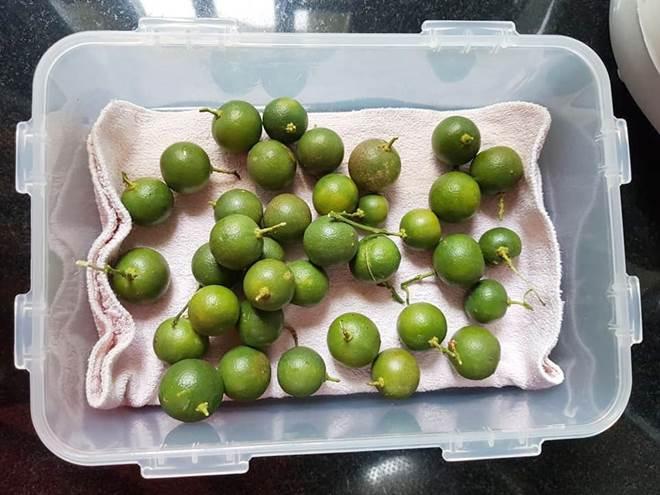 Mẹ đảm Đồng Nai mách cách bảo quản thực phẩm luôn tươi ngon, giữ được dinh dưỡng-8