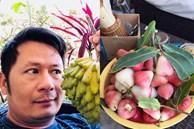 Về Mỹ đúng lúc dịch, Bằng Kiều làm nông dân 1 tháng, sửa vườn trồng thêm cây