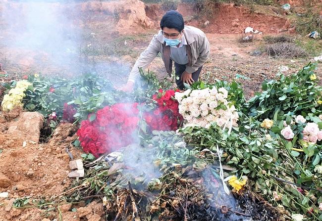 Xót xa nông dân cắt hoa đem đi đốt-1