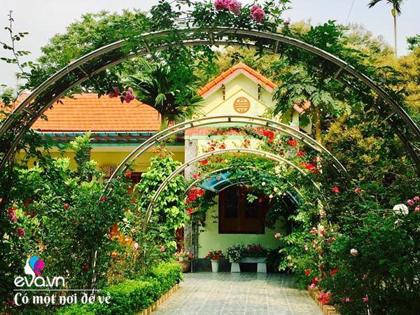Cô giáo xứ Thanh cải tạo vườn trống, 4 năm sau có ngôi nhà hoa hồng đẹp như mơ-13