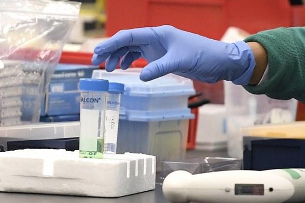 Virus corona len lỏi trong cơ thể bệnh nhân như thế nào?-3