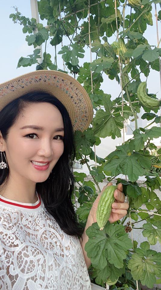 Khu vườn rau sạch trong biệt thự của Hoa hậu Đền Hùng Giáng My-2