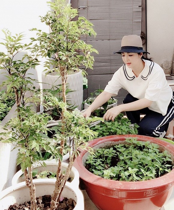 Khu vườn rau sạch trong biệt thự của Hoa hậu Đền Hùng Giáng My-4