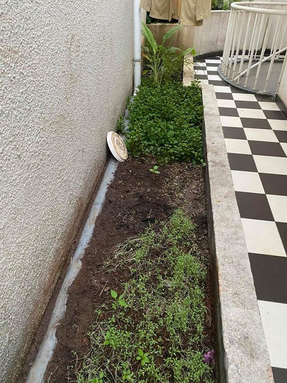 Khu vườn rau sạch trong biệt thự của Hoa hậu Đền Hùng Giáng My-21