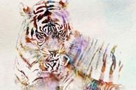 Những con giáp nam có tầm nhìn phi thường, dám phá vỡ mọi giới hạn, gạt bỏ mọi định kiến
