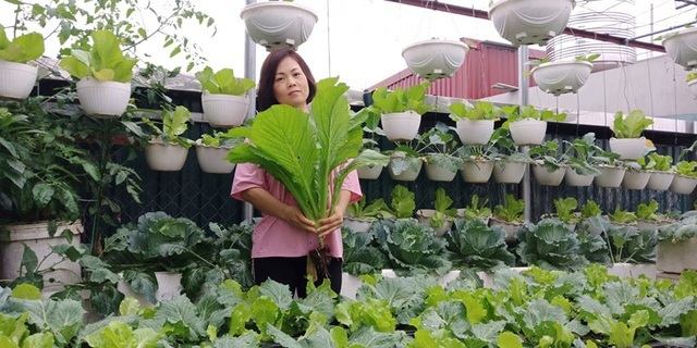 Mãn nhãn khu vườn trên mây tốt như nông trại của ông bố đảm Hà Nội-4