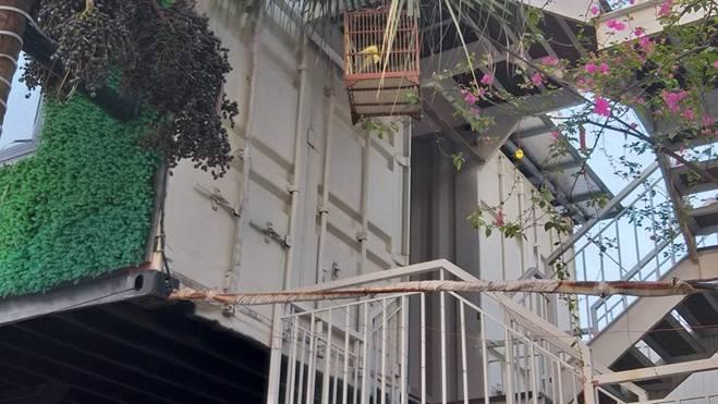 Chiêm ngưỡng ngôi nhà làm từ hai thùng container giữa thành phố Hà Tĩnh-7