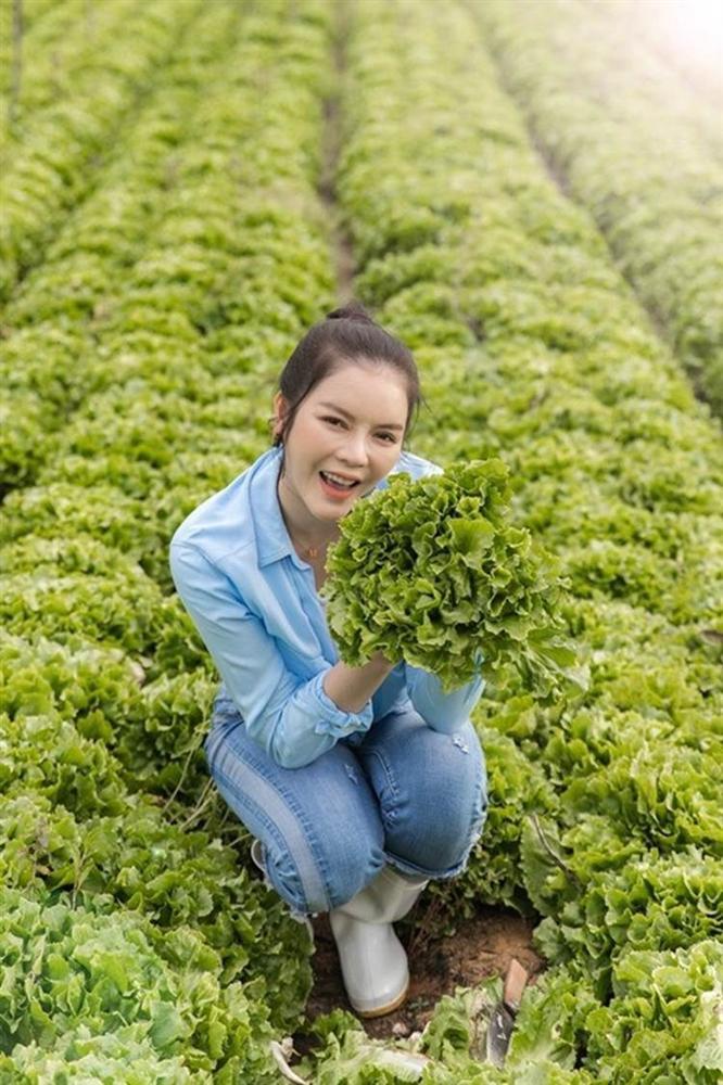 Về quê tránh dịch, Lý Nhã Kỳ đẩy xe rùa đi thu hoạch hoa quả trong nông trại 50 hecta-3