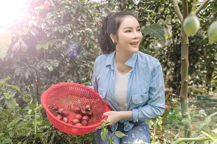 Về quê tránh dịch, Lý Nhã Kỳ đẩy xe rùa đi thu hoạch hoa quả trong nông trại 50 hecta-7
