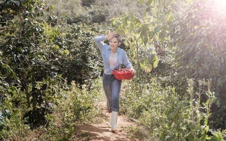 Về quê tránh dịch, Lý Nhã Kỳ đẩy xe rùa đi thu hoạch hoa quả trong nông trại 50 hecta-8