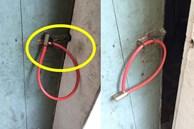 Thấy cửa được khóa cẩn thận nhưng nhìn kĩ, người ta tá hỏa với lỗi sơ đẳng của chủ nhà