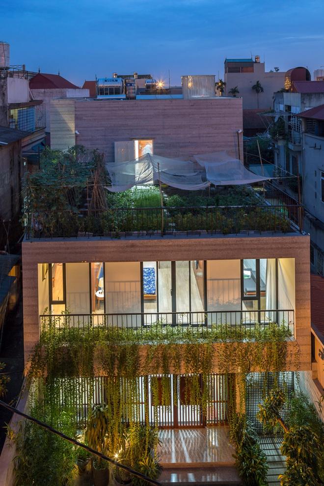 Nhà thiết kế với nhiều khu vườn nhỏ bên trong-1