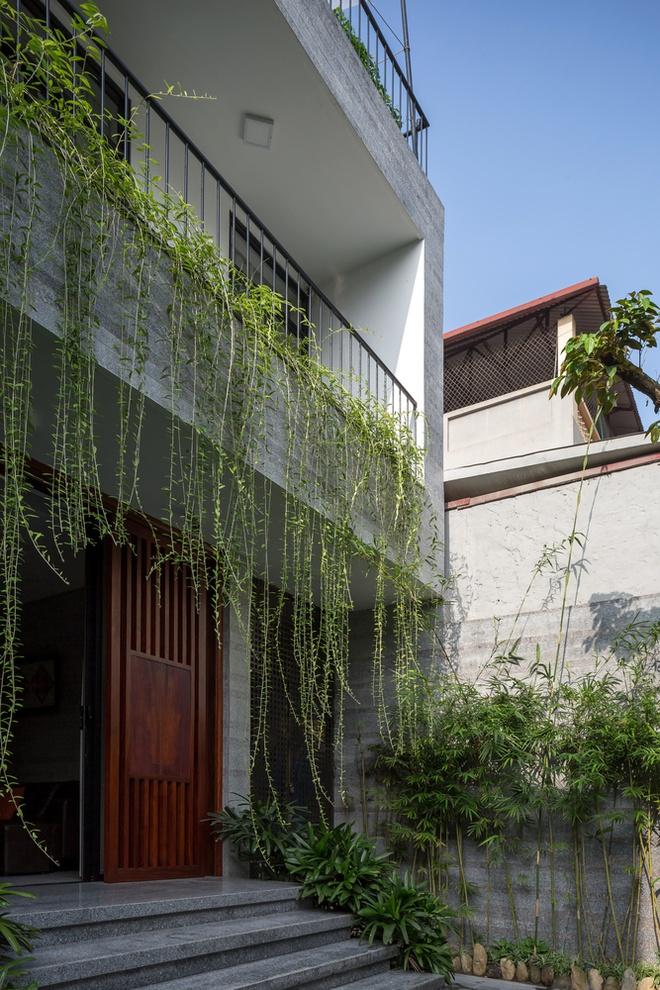 Nhà thiết kế với nhiều khu vườn nhỏ bên trong-2