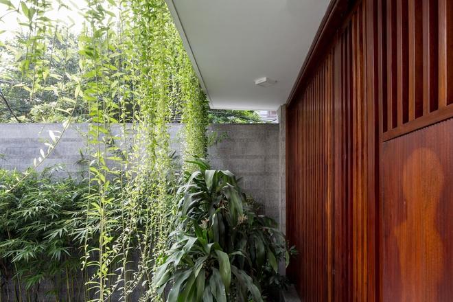 Nhà thiết kế với nhiều khu vườn nhỏ bên trong-3