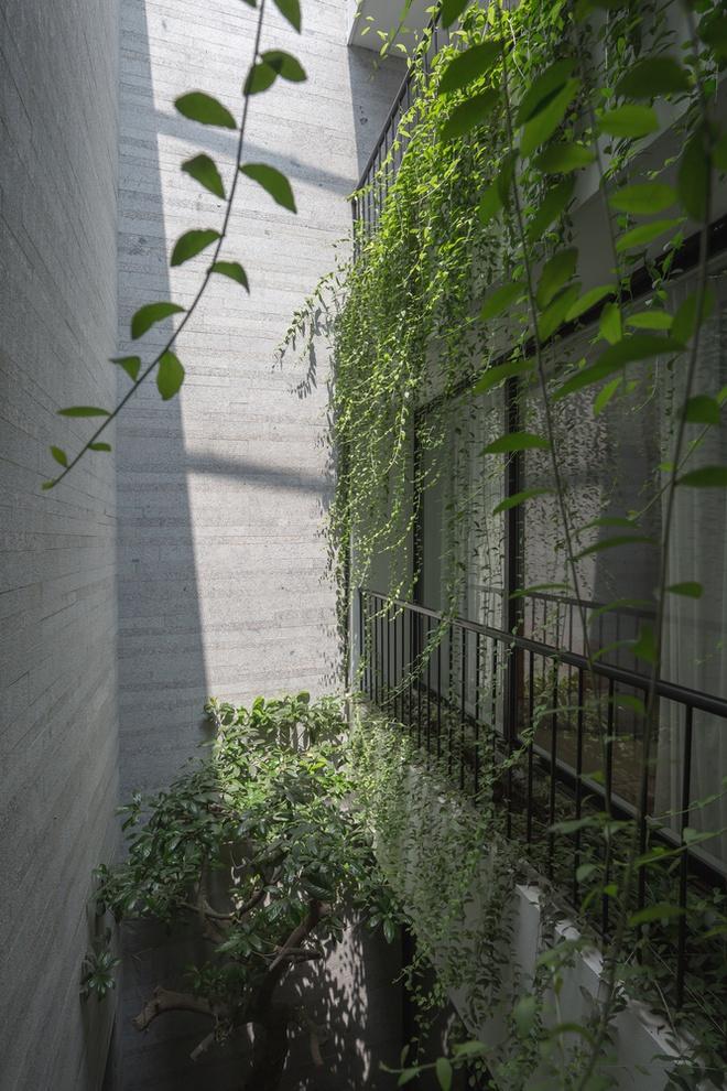 Nhà thiết kế với nhiều khu vườn nhỏ bên trong-9