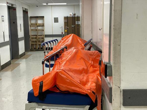 Hình ảnh đau thương tại tâm dịch New York: Thi thể nạn nhân COVID-19 xếp hàng chật hành lang bệnh viện-1
