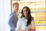 Meghan Markle lần đầu hé lộ tên tổ chức từ thiện mới sau khi rời khỏi hoàng gia, khác hoàn toàn so với suy đoán của dư luận