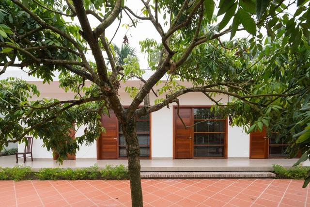 Cận cảnh nhà vườn hiện đại lọt thỏm giữa vườn nhãn trăm tuổi ở Hưng Yên-7